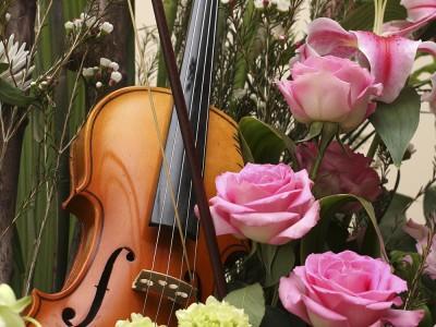 Violon et fleurs