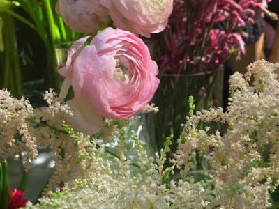 3 pivoines roses