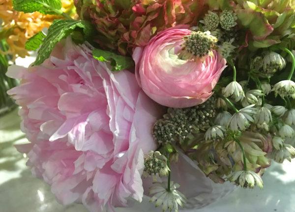 pivoines roses champêtre